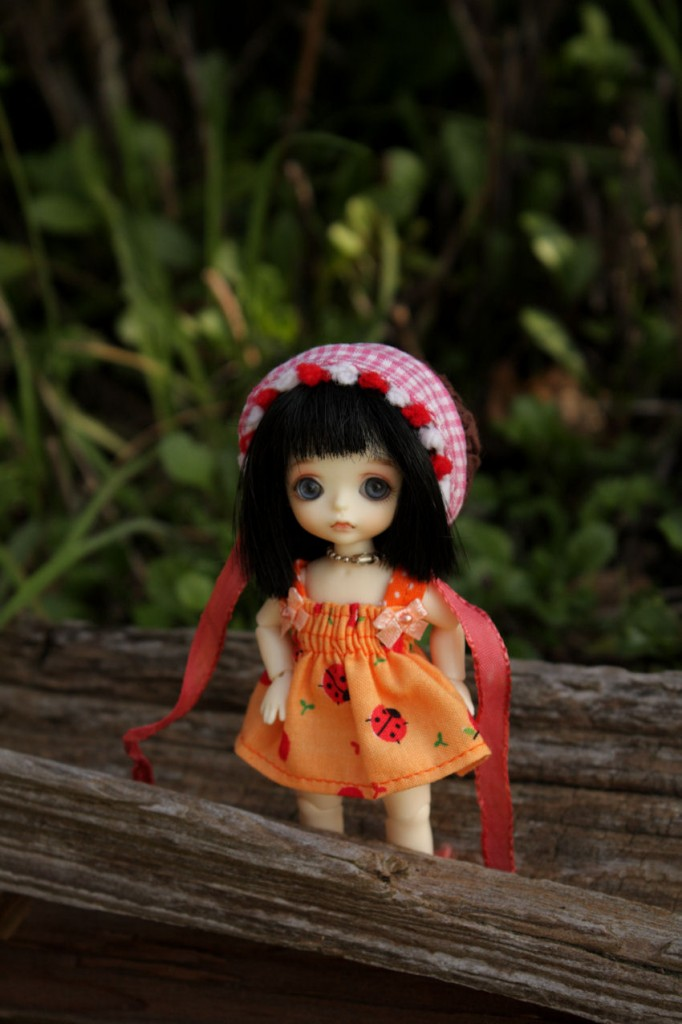 Loki, my White Special outdoors, she is wearing a cute dress made by joeykblythe on Etsy